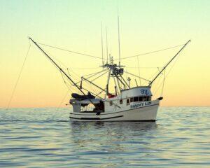 Pesca al curricán Alaska seafood