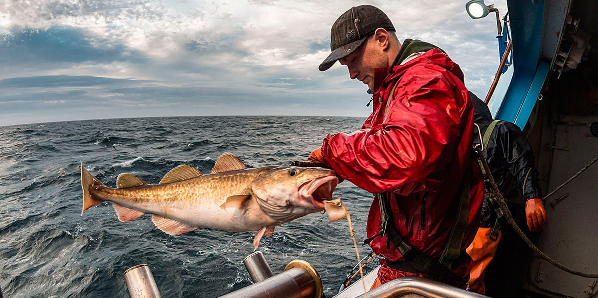 Gestión de pesquerías