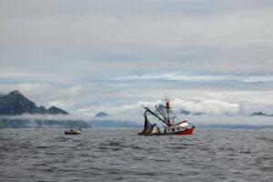 paisaje Alaska seafood 4