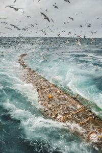 pesca con red de arrastre Alaska seafood