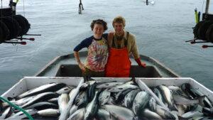 pescadores-salmon-alaska