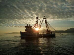 Pesca de cerco de jareta a la puesta del sol